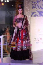 Model walks the ramp for Sonia Mehra at Aamby Valley India Bridal Week day 5 on 2nd Nov 2010 (27).JPG