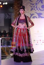 Model walks the ramp for Sonia Mehra at Aamby Valley India Bridal Week day 5 on 2nd Nov 2010 (31).JPG