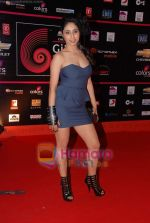 at Global Indian music Awards in Yashraj on 10th Nov 2010 (68).JPG