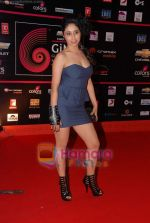 at Global Indian music Awards in Yashraj on 10th Nov 2010 (69).JPG