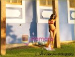 Poonam Pandey The Kingfisher Calendar girl 2011  (14).jpg