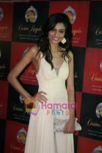 Neha Hinge at Casino Royale race press meet in RWITC on 14th Dec 2010 (13).JPG
