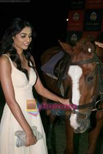 Neha Hinge at Casino Royale race press meet in RWITC on 14th Dec 2010 (22).JPG