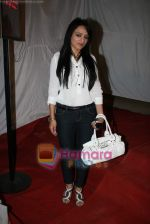 Arshie at Romi Anand bash in Andheri on 28th Dec 2010 (2).JPG