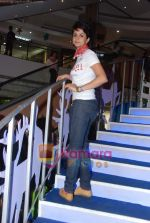 Gul Panag at Turning 30 promotional event in Inorbit Mall on 28th Dec 2010 (33).JPG