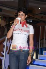 Gul Panag at Turning 30 promotional event in Inorbit Mall on 28th Dec 2010 (39).JPG