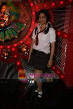 at Comedy Circus new season on location in Andheri on 28th Dec 2010 (38).JPG