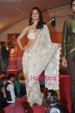 at New Year_s bash Dubai Dazzle in Hotel Intercontinental, Andheri on 1st Jan 2011 (80).JPG