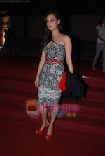 Dia Mirza at Overdrive Awards in Taj Land_s End on 4th Jan 2011 (2).JPG