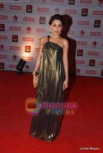 at 17th Annual Star Screen Awards 2011 on 6th Jan 2011 (54).JPG