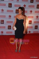 at 17th Annual Star Screen Awards 2011 on 6th Jan 2011 (62).JPG
