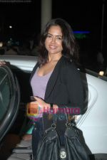 Sameera Reddy snapped at the airport on 7th Jan 2011 (8).JPG