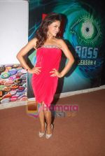 Veena Malik at Big Boss season 4 grand finale on 8th Jan 2011 (2).JPG