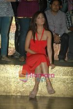 Riya Sen at Tere Mere Phere film launch in Dockyard on 12th Jan 2011 (16).JPG