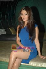 Riya Sen at Tere Mere Phere film launch in Dockyard on 12th Jan 2011 (9).JPG
