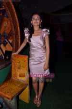 Sasha Goradia at Tere Mere Phere film launch in Dockyard on 12th Jan 2011 (3).JPG