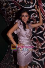 Sasha Goradia at Tere Mere Phere film launch in Dockyard on 12th Jan 2011 (52).JPG