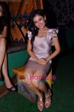 Sasha Goradia at Tere Mere Phere film launch in Dockyard on 12th Jan 2011 (7).JPG