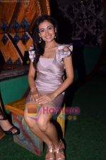 Sasha Goradia at Tere Mere Phere film launch in Dockyard on 12th Jan 2011 (8).JPG