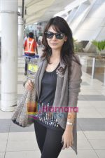 Aanchal Kumar spotted at airport in Mumbai Airport on 14th Jan 2011 (11).JPG