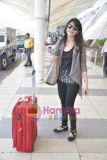 Aanchal Kumar spotted at airport in Mumbai Airport on 14th Jan 2011 (3).JPG