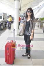 Aanchal Kumar spotted at airport in Mumbai Airport on 14th Jan 2011 (5).JPG