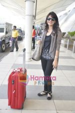 Aanchal Kumar spotted at airport in Mumbai Airport on 14th Jan 2011 (6).JPG