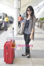 Aanchal Kumar spotted at airport in Mumbai Airport on 14th Jan 2011 (8).JPG
