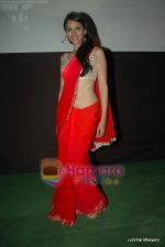 Aditi Rao Hydari at Yeh Saali Zindagi music launch in Marimba Lounge on 13th Jan 2011 (7).JPG