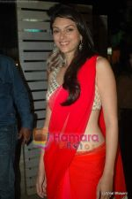 Aditi Rao Hydari at Yeh Saali Zindagi music launch in Marimba Lounge on 13th Jan 2011 (8).JPG