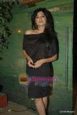 Chitrangda Singh at Yeh Saali Zindagi music launch in Marimba Lounge on 13th Jan 2011 (7).JPG