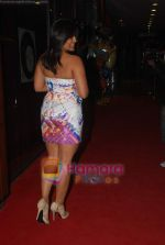 Meghna Naidu at Ashmit Patel_s birthday bash in Veda on 13th Jan 2011 (183).JPG