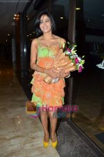 Shweta Tiwari at Ashmit Patel_s birthday bash in Veda on 13th Jan 2011 (4).JPG