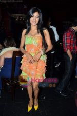 Shweta Tiwari at Ashmit Patel_s birthday bash in Veda on 13th Jan 2011 (9).JPG