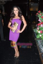 Veena Malik at Ashmit Patel_s birthday bash in Veda on 13th Jan 2011 (15).JPG