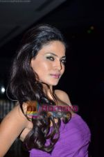 Veena Malik at Ashmit Patel_s birthday bash in Veda on 13th Jan 2011 (4).JPG