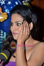 Veena Malik at Ashmit Patel_s birthday bash in Veda on 13th Jan 2011 (7).JPG