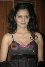 at Paisa Paisa album launch in Club Millennium on 13th Jan 2011 (14).JPG