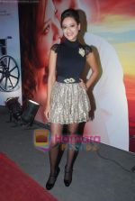 Maddalsa Sharma at the Audio release of film Angel in Dockyard on 18th Jan 2011 (2).JPG