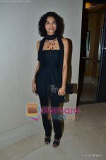 at Mijwan show in Trident, Bandra on 23rd Jan 2011 (196).JPG