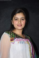 Navneet Kaur at mass marriage at Amravati announcement in the press club on 24th Jan 2011 (15).JPG