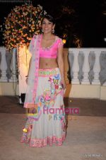 Koel Puri at  Imran Khan_s wedding reception in Taj Land_s End on 5th Feb 2011 (3)~0.JPG
