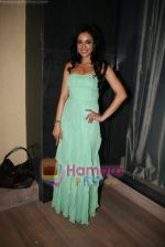 Madhuri Bhattacharya at Yamla Pagla Deewana success party in Novotel on 6th Feb 2011 (10).JPG