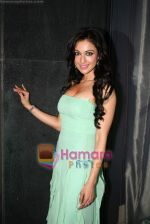 Madhuri Bhattacharya at Yamla Pagla Deewana success party in Novotel on 6th Feb 2011 (3).JPG