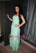Madhuri Bhattacharya at Yamla Pagla Deewana success party in Novotel on 6th Feb 2011 (5).JPG