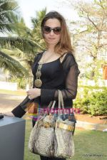 laila khan at Arzaan Khambatta_s art brunch in Madhuli, Worli on 13th Feb 2011.JPG