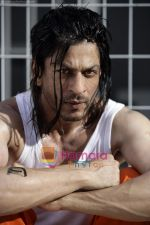 Shahrukh Khan_s new look for Don 2 (3).jpg
