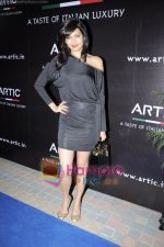 Karishma Tanna at Arctic Vodka launch in Sea Princess on 3rd March 2011 (10).JPG