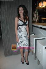 Shweta Agarwal at Sunidhi Chauhan_s dinner party in Andheri on 3rd March 2011 (4).JPG