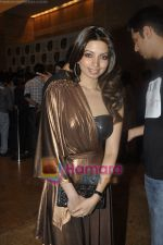 Shama Sikander at Anita Dongre show at Lakme Fashion Week 2011 Day 3 in Grand Hyatt, Mumbai on 13th March 2011 (24).JPG